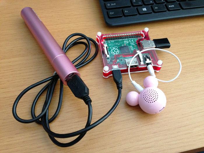 Portable Raspberry Pi A+