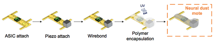 neural sensors
