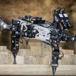 Nature-Inspired 6-Legged Hexapod Robots